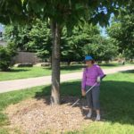 Shelby Park Neighbors weeded and mulched trees to keep the park looking tidy.