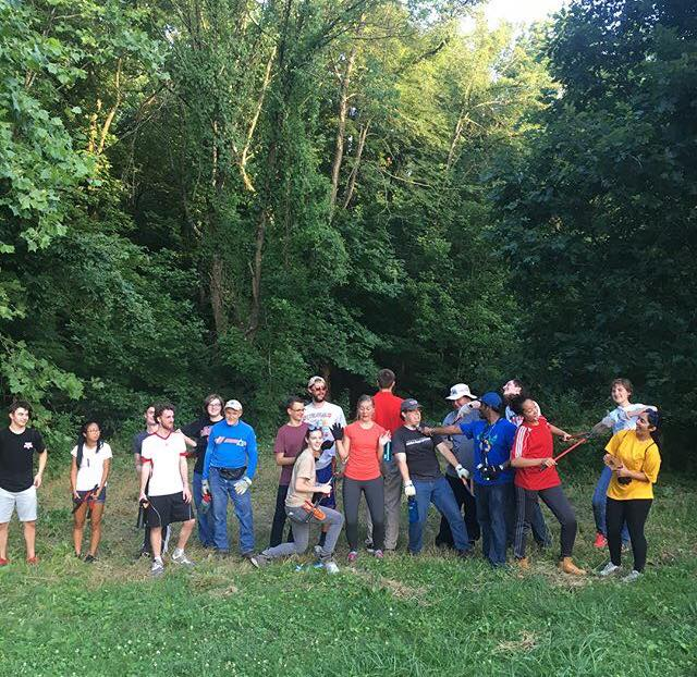 Cherokee Park Volunteers carefully removed invasive vines to help save trees.